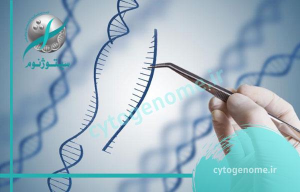 بررسی جهش های ژن های BRCA1 و BRCA2