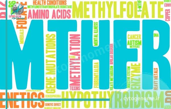 بررسی متیلن تترا هیدرو فولات ردکتاز – MTHFR