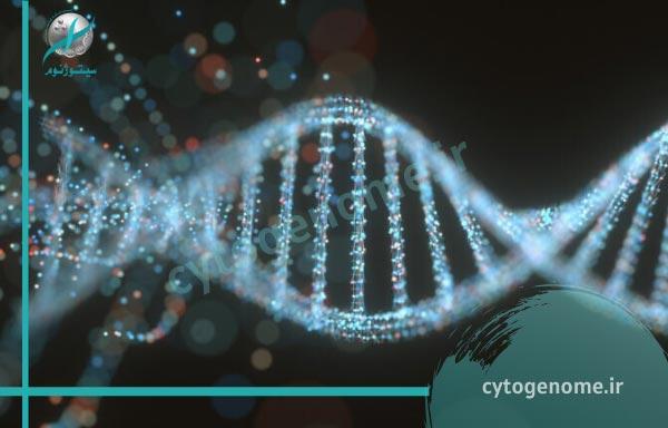 تعیین توالی DNA