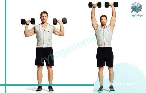 دمبل ایستاده تمرین تناسب اندام