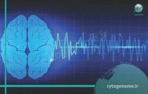 اختلالات رفتاری مبتلایان به صرع