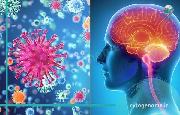 بیماری مننژیت