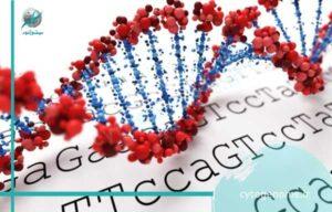ریشه شناسی ژنتیک